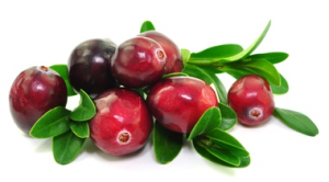 cranberry, BNK, Seek, Fiber, Blueberry, Raspberry, Powder, Fiber, Phytonutrients